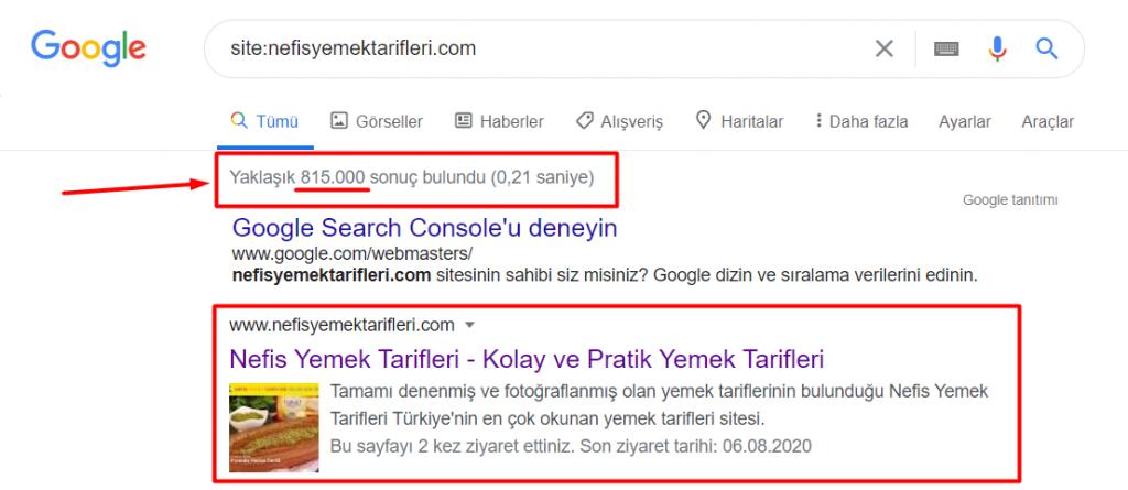 Google İndex Sayısı